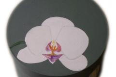 Schmuckdose Orchidee